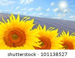 Solar power station and sunflowers. Pure energy concept. - stock photo