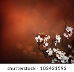 Cherry flowers background. Abstract spring bokeh background - stock photo