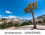 Olmsted point at Yosemite, California. Half Dome can be seen in the distance. - stock photo