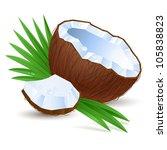 Coconut. Illustration for design on white background - stock vector