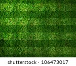Vivid Green grass background,Can use as background - stock photo