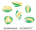 Symbols of cereal plants for agriculture design. Jpeg version also available in gallery - stock vector