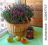 Chrysanthemum, apples and a lantern on a balcony - stock photo
