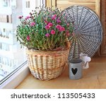 Bush of pink chrysanthemum in a basket on a balcony - stock photo