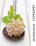 Pinkish - green  Autumn Hydrangea flower on rich brown wood   spoon against rustic board. shallow dof - stock photo