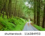 Scenic winding road through green forest in Scotland - stock photo