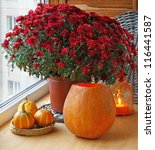 Bunch of red chrysanthemums and pumpkins with an orange lantern-candlestick. - stock photo