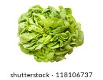 Fresh lettuce Lollo isolated on white background - stock photo