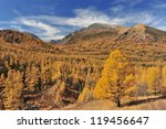 Forests and mountains - stock photo