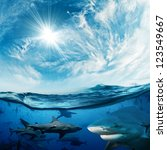 Beautiful cloudy divine background with sunlight and a lot of dangerous sharks underwater design concept - stock photo