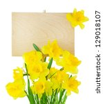 Beautiful Narcissus ( Daffodil ) and Empty Sign for message / wooden panel / isolated on white - stock photo