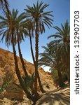 Chebica, oasis in Tunisia - stock photo