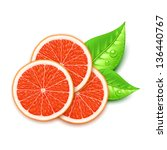 grapefruit slice - stock vector