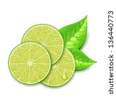 lime slice - stock vector