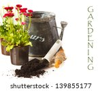 Potted Daisy flowers, old watering can and garden tools on a white background. - stock photo