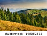 coniferous forest in mountains at sunset of the autumn day - stock photo
