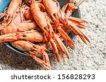 Fresh seafood straight from the sea - stock photo