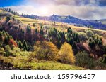autumn mountain landscape. valley on the hillside with coniferous and yellowed trees in early morning - stock photo