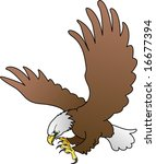 Illustration of bald eagle with spread wings - stock vector