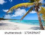 Idyllic beach with palm tree at Bahamas - stock photo