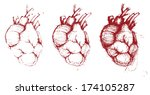 Hand-drawn human hearts, vector illustration, red collection - stock vector