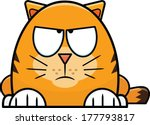 Cute little cartoon cat with a grumpy expression.  - stock vector