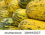 A group of yellow melons well organized - stock photo
