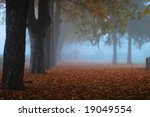 Alley of trees in the fog during autumn - stock photo