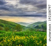 summer landscape. yellow flowers on the meadow hillside. village near forest in morning fog on the mountain - stock photo
