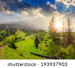 mountain summer landscape. pine trees near meadow and forest on hillside under  cloudy sky at sunset - stock photo