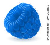 Raster version. Shiny blue raspberry isolated on white background. Realistic llustration - stock photo