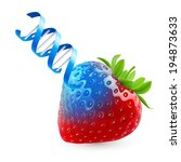 Fresh strawberry undergoing GMO rendered as DNA - stock vector