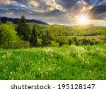 mountain summer landscape. pine trees near meadow and forest on hillside under  sky with clouds at sunset - stock photo