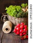 Fresh kitchen garden vegetables and herbs. - stock photo