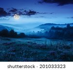 cold fog on forest near mountains at night in moon light - stock photo