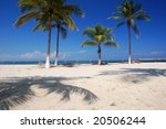 Palm trees on a tropical beach - stock photo
