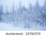 winter landscape / horizontal / snow forest / Finland / blue color - stock photo