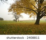 A golden Autumn tree and a grassy field during an early morning mist. - stock photo