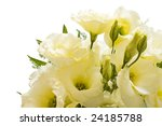 lisianthus bouquet isolated  on white with clipping path - stock photo