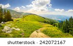 composite mountain landscape. pine trees and boulders near meadow path on hillside with rainbow - stock photo