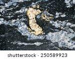 Metamorphic rock background - stock photo