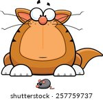 Cartoon illustration of a funny cat staring at a toy mouse.  - stock vector