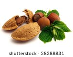 Almond and hazelnuts on a white background - stock photo