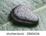 wet stone on leaf - stock photo