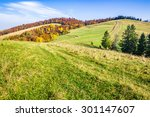 autumn forest with red and yellow foliage and few evergreen trees on mountain hillside - stock photo