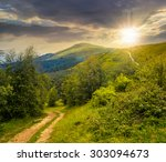 composite landscape. path through the field with green grass in mountains near the forest in sunset light - stock photo