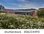 Saint Petersburg, Russia - August 7, 2015: Wildflowers in a meadow near the new highway bridge on a forest road. - stock photo