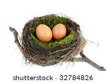 Easter nest - stock photo