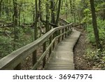 Wooden steps and a railing help the start of this hike along marked trails in Cheesequake Park in Monmouth County, New Jersey. - stock photo