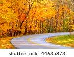Forest road curving under brilliant autumn foliage - stock photo